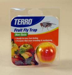 TERRO Fruit Fly Trap Review & Giveaway - Mommies with Cents